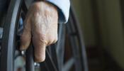 disability wheelchair photo